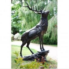 Elk on stone
