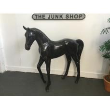 Standing Foal